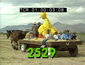 2529.jpg