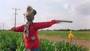 Big Bird scarecrow.jpg