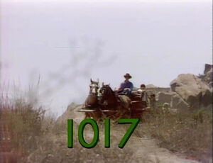 1017.jpg