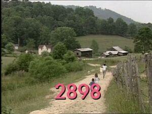 2898.jpg