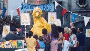 Big Bird for President.jpg
