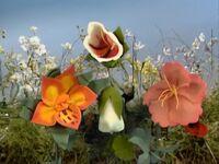 MGS-Flowers