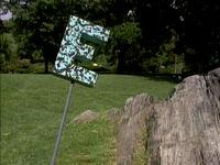 Ornate E's