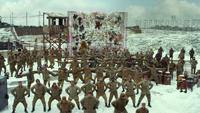 MMW gulag wall