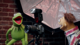 MuppetsNow-S01E01-SleeveErased-Kermit