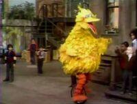 BigBird.unicycle