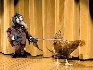 Lolita the Chicken