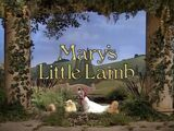Episode 20: Mary's Little Lamb