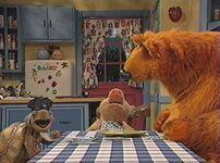Bear324l