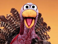SesameTurkey