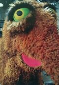 Snuffy eyes close-up