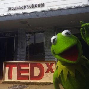 Kermit TED Nov 6 2014.jpg