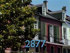 2877.jpg