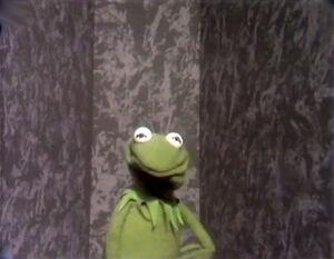 KermitLectureWall.jpg