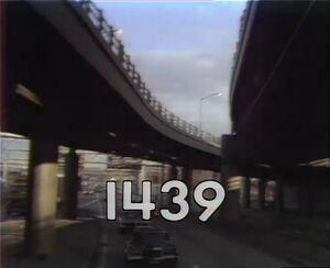 1439.jpg