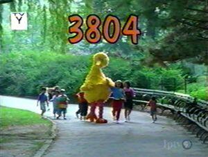 3804.jpg