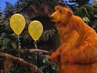 Bear234g