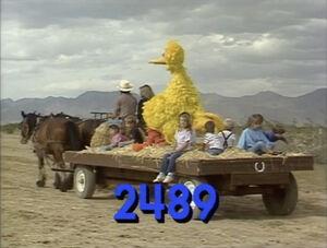 2489.jpg
