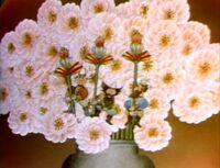 Gnomes flower vase