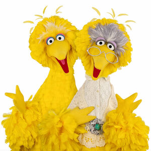 BigBird-and-GrannyBird.jpg