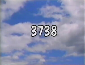 3738.jpg