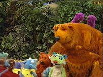 Bear421g