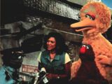 The Adventures of Elmo in Grouchland deleted scenes