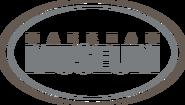Museum Logo - COLOUR transparent