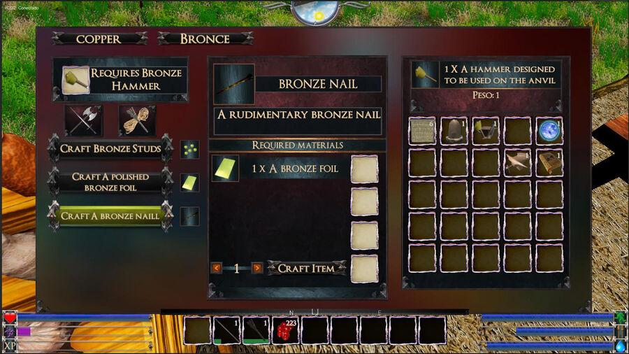 A Bronze Naill