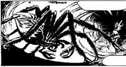 Axa-MutantSpider1.jpg