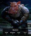 Bormin profile.jpg