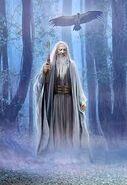 Druid5