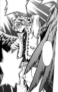 Hawks (Manga)