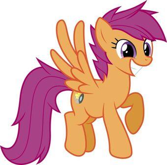 Scootaloo O C My Little Pony Friendship Is Magic Rakoon1 S Universe Wikia Fandom The more popular ones being; little pony friendship is magic