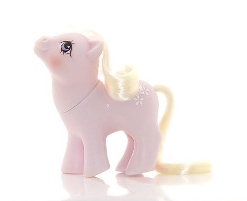 Types Of Ponies My Little Pony G1 Wiki Fandom
