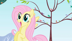 Fluttershy Happy.png