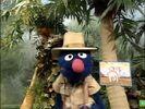 Sesame Street Grover and the Elephant Hollywoodedge, Bird Parrot VariousS PE021301-8
