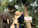 Sesame Street Grover and the Elephant Sound Ideas, BIRD, PARROT - LARGE SINGLE CALL, ANIMAL