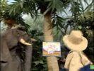 Sesame Street Grover and the Elephant Hollywoodedge, Bird Parrot VariousS PE021301-2