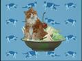 Elmo's World Cats Quiz 4