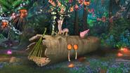 MadagascarSymphony5