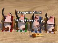 PenguinChat10