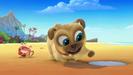 Puppy Dog Pals Theme Song Wilhelm Scream 2