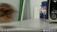 Screenshot 2021-01-17 Annoying Orange - Kung Fruit (Ft Shane Dawson) - YouTube(3)