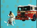 Elmo's World Dogs Quiz 8