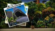 MadagascarGalleryVideo8