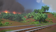 BanjoandtheBushfire85