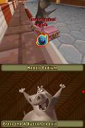 MadagascarKartzDS76