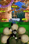 MadagascarDS391