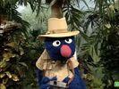 Sesame Street Grover and the Elephant Hollywoodedge, Bird Parrot VariousS PE021301-9